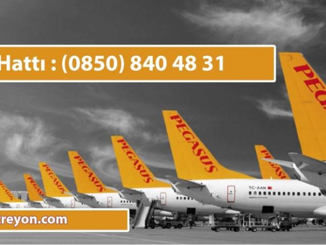 Ucuz Uçak Bileti Numaraları